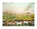 The Cornell Farm, 1848 Plakater av Edward Hicks