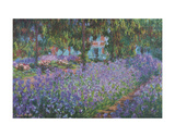 The Artist's Garden at Giverny Poster af Claude Monet