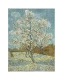 The Pink Peach Tree, 1888 Kunstdrucke von Vincent van Gogh