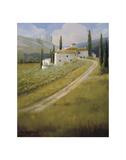 Tuscany Vineyard Posters by Carolyne Hawley
