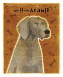 Weimaraner Schilderij van John W. Golden