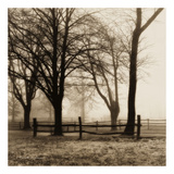 Woods with Fence Poster par Harold Silverman
