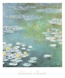 Waterlilies at Giverny, 1908 Poster von Claude Monet