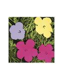 Flowers, 1970 (1 purple, 1 yellow, 2 pink) 高品質プリント : アンディ・ウォーホル