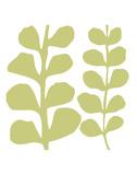 Green Fern on White Affiches par Denise Duplock