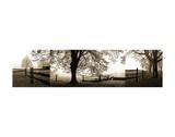 Frosted View Lámina por Harold Silverman