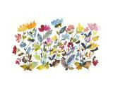 High Country Wildflowers N. 2 Prints by Kiana Mosley