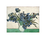 Irises Stampa giclée di Vincent van Gogh