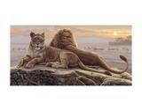 Lions of the Mara Plakater af Kalon Baughan