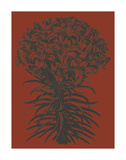 Lilies 9 Art par  Botanical Series