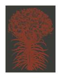 Lilies 10 Art par  Botanical Series