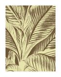 Leaf 3 Affiches par  Botanical Series
