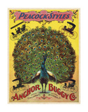 Peacock Styles Anchor Buggy Co. ca. 1897 Poster di  Vintage Reproduction