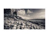 Otter Cliff Coastline Láminas por Michael Hudson