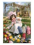 Hederson Autumn Bulbs New York Prints