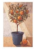 Oranger Affiches par Karsten Kirchner