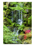 Schwartz - Heavenly Falls Prints by Don Schwartz