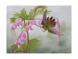 Bleeding Hearts and Hummer Prints by Julie Peterson