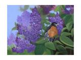 Lilacs Robin Affiches par Julie Peterson