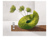 See-Sawing Sea Weed Art par Karsten Kirchner
