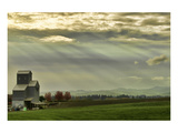 Schwartz - Wine Country Sunset Prints by Don Schwartz