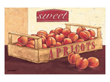 Sweet Apricots Posters par Bjoern Baar
