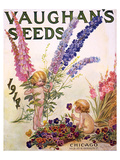 Vaughan's Seeds Chicago 1914 Julisteet