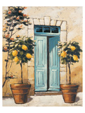 Villa Medici Side Door Prints by Karsten Kirchner