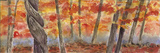 Mason Farm Fall Affiche par Beverly Dyer