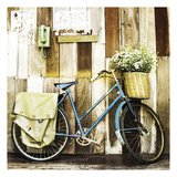 Bicicleta azul Láminas