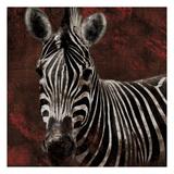 Zebra Streaks Print by Jace Grey