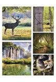 Earth's Bounty Prints