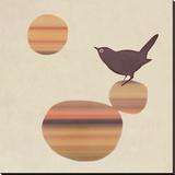 Fly on the Wall Sträckt kanvastryck av Amy Ruppel