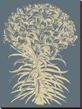 Lilies 2 Toile tendue sur châssis par  Botanical Series