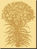 Lilies 19 Toile tendue sur châssis par  Botanical Series