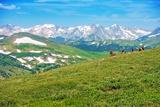 Colorado Panorama with Elks Reproduction photographique par  duallogic