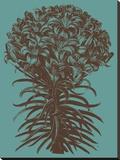 Lilies 5 Toile tendue sur châssis par  Botanical Series