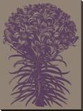 Lilies 14 Toile tendue sur châssis par  Botanical Series