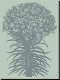 Lilies 8 Toile tendue sur châssis par  Botanical Series