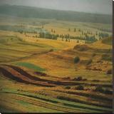 Transylvania 4 Stretched Canvas Print by Crina Prida