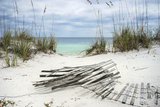Sand Fence and Sea Oats at Florida Beach Premium Photographic Print by  forestpath
