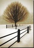Solitude Toile tendue sur châssis par David Lorenz Winston