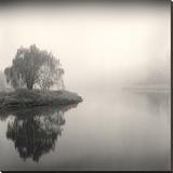 Tree, Study 9 Impressão em tela esticada por Andrew Ren
