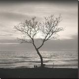 Tree, Study 5 Impressão em tela esticada por Andrew Ren