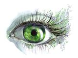 Human Eye Poster by  okalinichenko