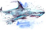 Shark Kunstdrucke von  okalinichenko