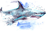 Shark Láminas por  okalinichenko
