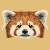 Illustrated Portrait of Red Panda Láminas por  ant_art19