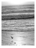 Pacific Ocean Seascape 22 Láminas por Murray Bolesta