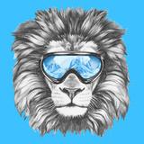 Portrait of Lion with Ski Goggles. Hand Drawn Illustration. Reproduction giclée Premium par  victoria_novak